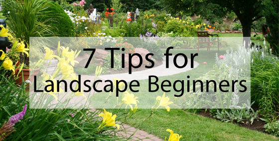 Landscaping ideas for beginners for Garden designs for beginners
