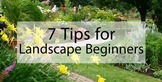 7 tips for landscaping beginners landscape edging blog - Garden design for beginners ...