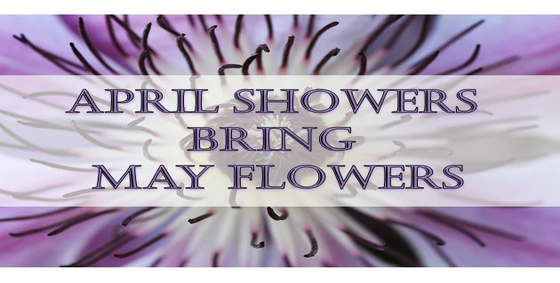 april_showers_bring_may_flowers