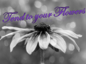Tend_To_Your_Flowers(1)