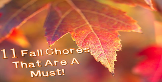 11_Fall_Chores_That_Are_A_Must_