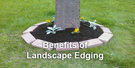 benefits landscape edging