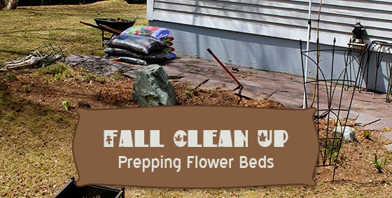 prepping flower beds fall