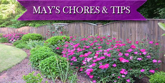 may chores tips