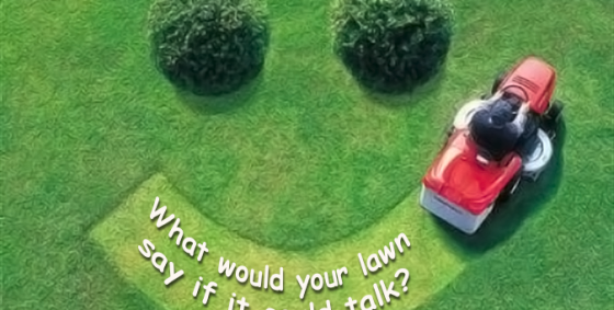 what would your lawn say