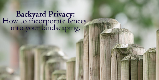 Backyard Privacy: How To Incorporate Fences Into Your